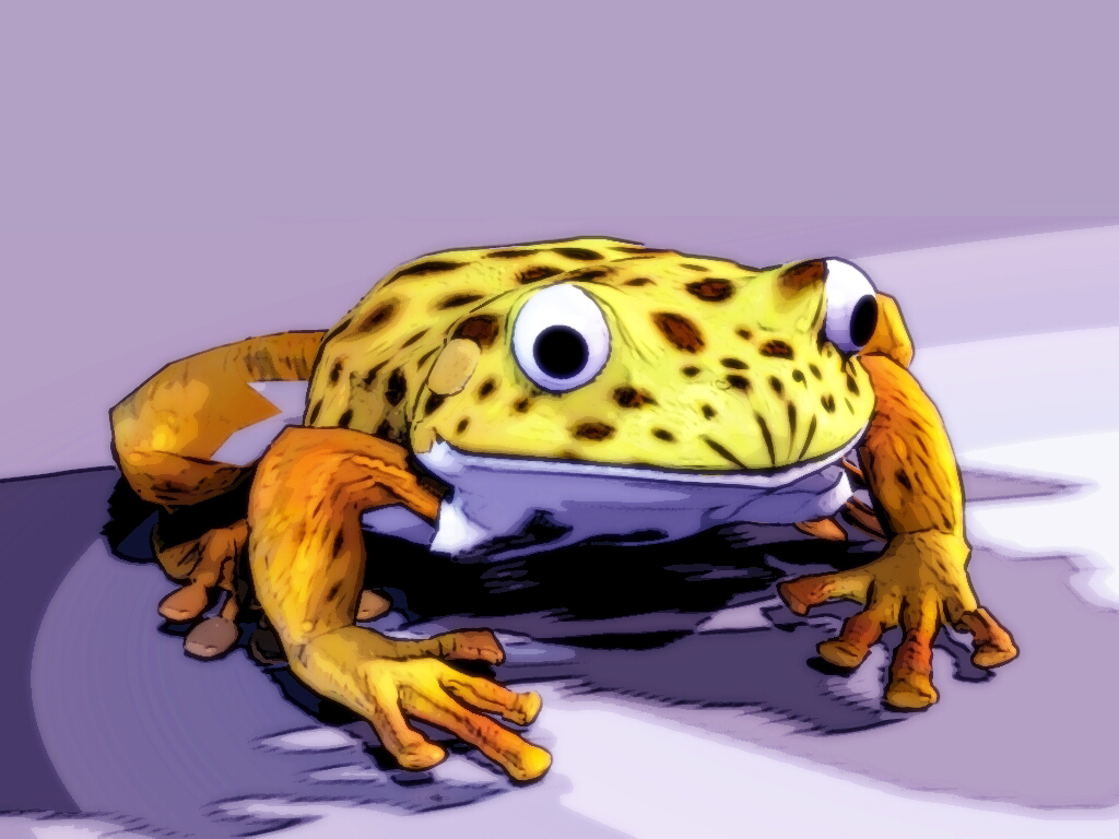 The return of yellow frog